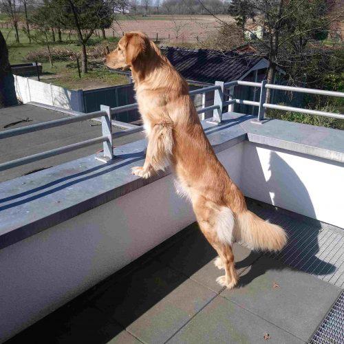 Käthe auf Terrasse und Garten24